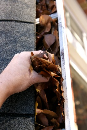 Gutter cleaning by Handyman Services